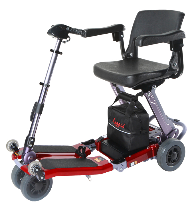 Product Name: Luggie (motorized scooter)<BR> Company Name: Freerider Corp. <BR> Model No.: FR168-4 (IT)