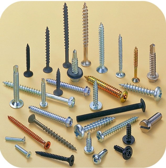 Ray Fu supplies a broad array of fasteners including self-drilling screws, chipboard screws, roofing screws, etc.
