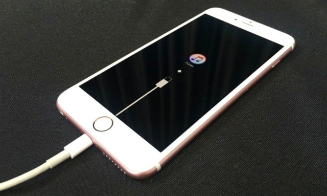iPhone 6S (photo provided by UDN.com)