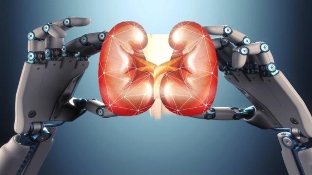 對於高通量篩選(high-throughput screening, HTS)來說,由多功能幹細胞(pluripotent stem cells)生成的類器官(organoid)是一個具有極大發展潛力的工具。類器官可應用於癌症基因體學、藥物反應和藥物敏感性測試等研究,但它培養過程相當複雜,需要大量時間和精巧的人力投入。因此,對於類器官小型化和自動化生產來說,仍有許多挑戰和困難需要克服。 圖/基因線線上 提供