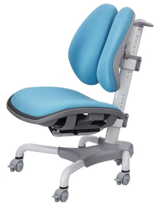 CS-299B ergonomic double-backed learning chair.