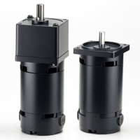 DC Gear Reducer Motor
