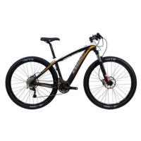 C29 Mountain Bike
