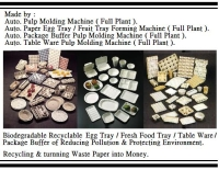 自動 紙漿模塑 環保餐具 整廠機械設備