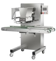 Multifunctional Sorting Filling Machine