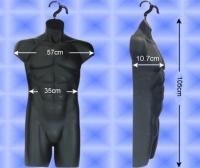 Free-Hanging Men's Torso—Muscle-bound