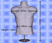 Free-Hanging Men's Torso With Stand