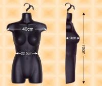 Free-Hanging Ladies' Torso--High Waist