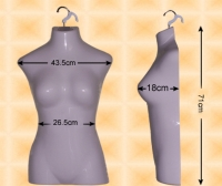 Free-Hanging Ladies' Chest Form--Buxom