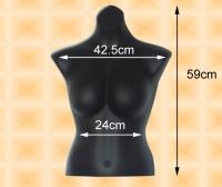 女模特兒(短牆,禮服,大胸)