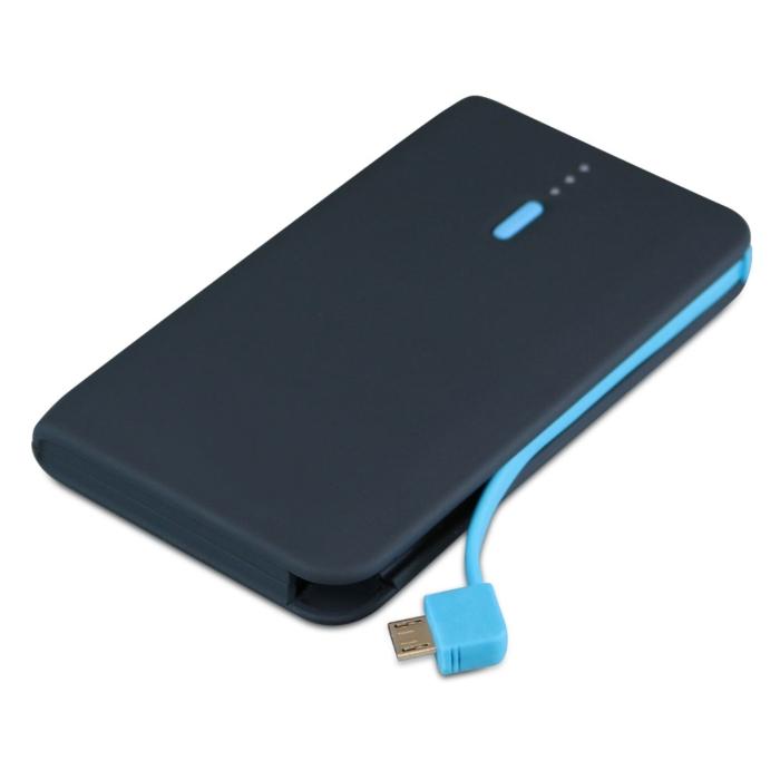 Portable Li-ion Battery