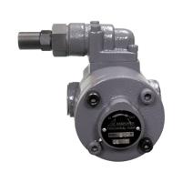 Trochoidal Pump