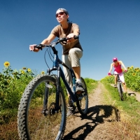 Bicycle Testing Services