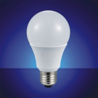 LED Bulb (Plastic Housing)