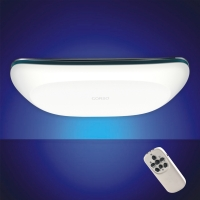 LED Streamline Ceiling Lamp(with Remote Control)