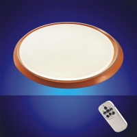 Intelligent LED Ceiling Lamp (with Remote Control)