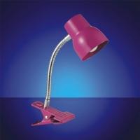 Pretty LED Desk Lamp