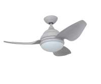 Ceiling Fan Light