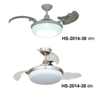 Ceiling Fan Light