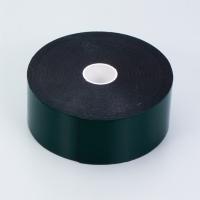 Cens.com Body Protector Moldings 德箴企業有限公司
