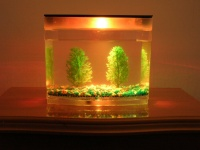 Aquaria Lighting (ODM)