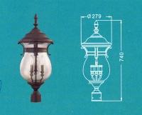 Lantern Light