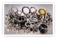 EXSEV  Bearing Series (for specific environments)