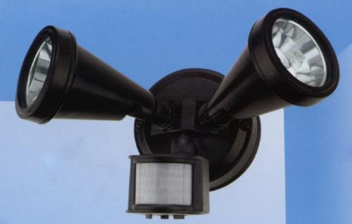 Security sensor light
