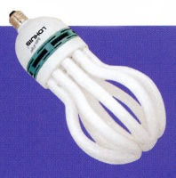 Cens.com Electronic Energy Saving Lamp Zhejiang Jinyun Tianhuang Ind. Co., Ltd.