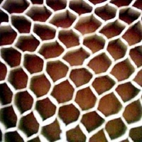 Cens.com Honeycomb Board BAO CUU PHONG CO., LTD.