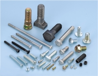 All kind of Bolts(Screws)
