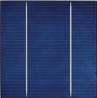 Cens.com 六吋多晶(156x156mm)太陽能電池 昱晶能源科技股份有限公司
