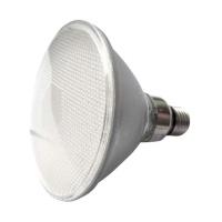 PAR38 LED 燈杯