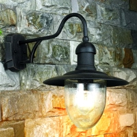 Steel with glass diffuser wall lamp