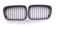 BMW E46 Carbon Grille