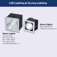 LED Lighting & Saving Lighting