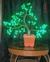 LED Miniascape