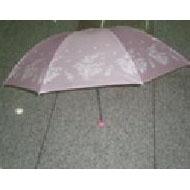 Fold Umbrella