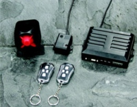 Anti - theft Devices