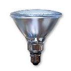 LED Spotlight Bulb