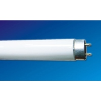 Cens.com T8 (Effective) Straight Tubular Fluorescent Lamps GUANGZHOU JIUFO ELECTRIC APPLIANCE CO.,LTD