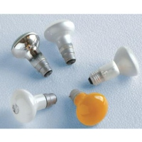 Cens.com Mushroom Bulbs DIEN QUANG LAMP JOINT STOCK