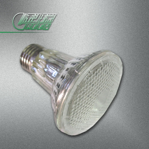 LED Par20
