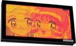 Indoor RGB Display