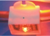 LED Lights Lines Piranhas