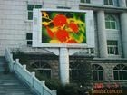 Cens.com LED Display LAN RIVER ILLUMINATION FACTORY