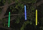 Cens.com Treelight GARLUX ELECTRONIC CO., LTD
