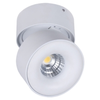 Charming LED Surface Mounted Spot Light for Europe, Australia