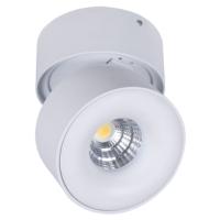 Charming LED Surface Mounted Spot Light for Europe, Australia