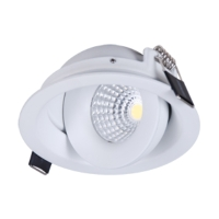 Gimbal Tilt COB LED Down Light Indoor Customize down light